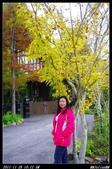 20111126-1127 清境+福壽山:005.jpg