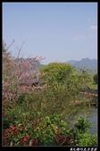 20130119 巧克力雲莊+花露休閒農場:巧克力雲莊021.jpg