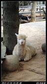 20121224天馬牧場:天馬牧場003.jpg