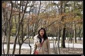 韓國櫻花:韓國248.jpg