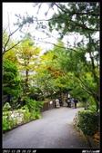 20111126-1127 清境+福壽山:011.jpg