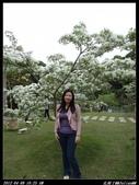 20120408花開了:花開了01.jpg