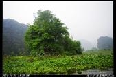 2011 越南行:越南282.jpg