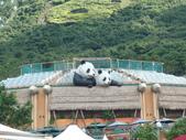 香港之旅:香港 162.JPG