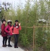 九族文化村2019.2.16:7.jpg
