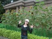 台北自來水園區2012/12/16:CIMG9098.JPG