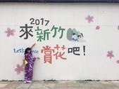 2017新竹公園櫻花季 106.03.12:18.jpg