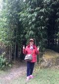 溪頭、杉林溪2日樂活遊107/12/8.9:64.jpg
