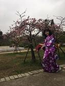 2017新竹公園櫻花季 106.03.12:5.jpg