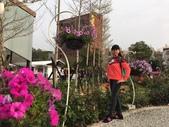 九族文化村2019.2.16:4.jpg