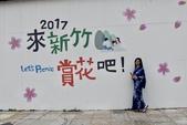 2017新竹公園櫻花季 106.03.12:11.jpg