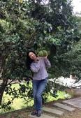 新竹市106年社區照顧關懷據點志工表揚2017.08.17:07.jpg