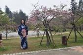 2017新竹公園櫻花季 106.03.12:10.jpg