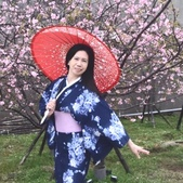 2017新竹公園櫻花季 106.03.12:相簿封面
