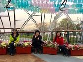 九族文化村2019.2.16:6.jpg