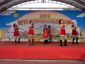 2013新竹市健康社區嘉年華102/01/01:DSCN1568.JPG