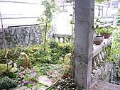 花 園:P1030781