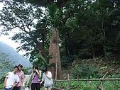 台東之旅:DSCF0792.jpg