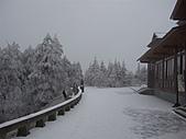 冰雪峨嵋:DSCF0113.jpg