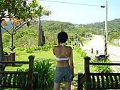 環島旅行:P1020770