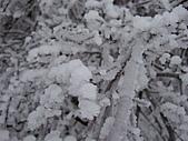 冰雪峨嵋:DSCF0116.jpg