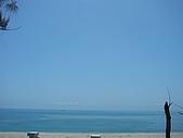 環島旅行:P1020699