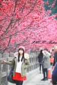 2014.02.08~一場音樂的邂逅~:未命名-1-16.jpg