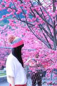 2014.02.08~一場音樂的邂逅~:未命名-1-20.jpg