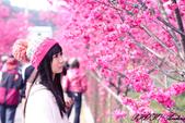 2014.02.08~一場音樂的邂逅~:未命名-1-22.jpg