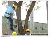 爬桿的猴子們:Canon PowerShot A710 IS47.jpg