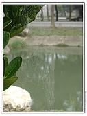 生態:2Canon PowerShot A710 IS.jpg