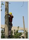 爬桿的猴子們:Canon PowerShot A710 IS46.jpg