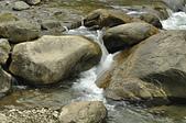 出外走走:蓬萊溪護魚步道