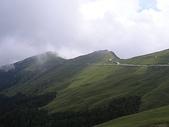 花草樹木自然風景:P1010145.JPG