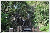 出外走走:大坑九號登山步道