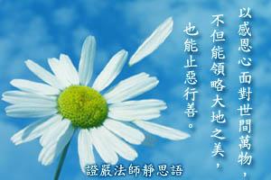 靜思語:IMG_4985.JPG