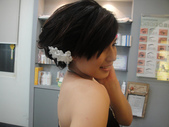 2011髮型進修 作品:2011 8月 作品集