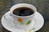 東照山咖啡休閒農場:IMG_6585.JPG