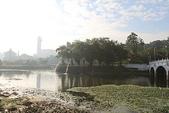 金獅湖的早晨:IMG_2760.JPG