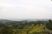 東照山咖啡休閒農場:IMG_6595.JPG
