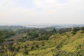 東照山咖啡休閒農場:IMG_6580.JPG
