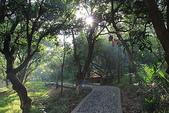 金獅湖的早晨:IMG_2762.JPG