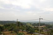 東照山咖啡休閒農場:IMG_6594.JPG