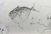 画筆練習生1-10:8魚+布局鉛筆素描20160505.jpg
