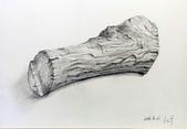 画筆練習生1-10:6木頭鉛筆素描20160421.jpg