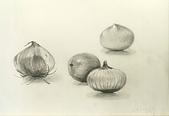 画筆練習生1-10:1洋蔥等球狀物鉛筆素描20160303.jpg