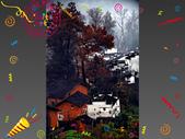 Xuite活動投稿相簿:醒來吧!世界多美ㄚ!