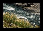 巴陵大橋(舊虹橋)風景很不錯:河邊的芒草伴溪水,多詩情畫意!