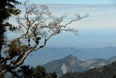 Xuite活動投稿相簿:大雪山國家公園