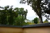 日本----金閣鹿苑寺: